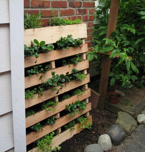 DIY Herb Garden Made of Pallets Вертикальный сад из поддонов