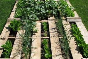 Портативный огород из поддонов