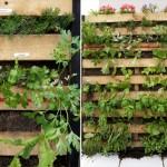 Вертикальный сад для дома из поддона